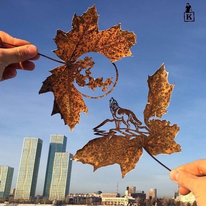 Lá rụng thường bị tống vào thùng rác, lá rụng ở Kazakhstan lại biến thành cả bầu trời nghệ thuật - Ảnh 11.
