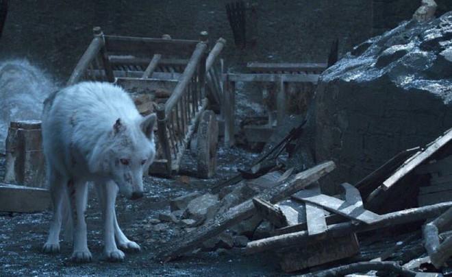Không phải rồng hay người chết, đây mới là nhân vật đáng thương đến ám ảnh trong Game of Thrones - Ảnh 2.