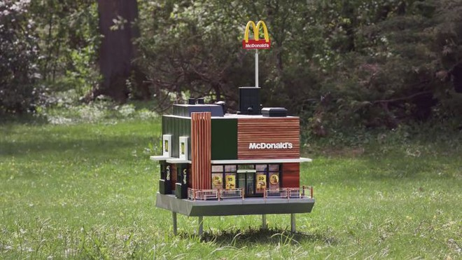 McDonalds khai trương McHive, nhà hàng tí hon dành riêng cho ong - Ảnh 1.