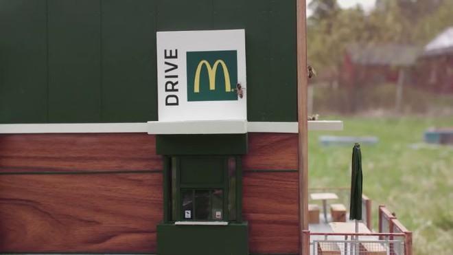 McDonalds khai trương McHive, nhà hàng tí hon dành riêng cho ong - Ảnh 15.