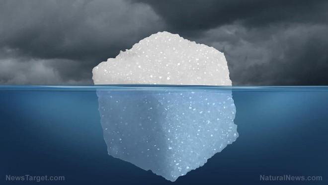 Liệu pháp trao đổi chất: Chúng ta có thể ăn kiêng để bỏ đói tế bào ung thư được hay không? - Ảnh 2.