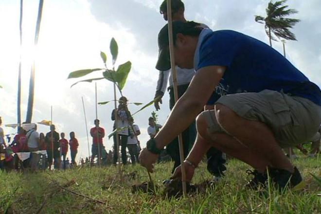 Philippines: Học sinh, sinh viên phải trồng 10 cây xanh mới được tốt nghiệp - Ảnh 2.