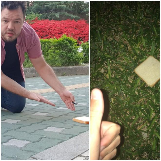 Yêu địa lý, 2 thanh niên trên reddit hẹn nhau làm bánh mì kẹp Trái Đất và thu hút gần 130.000 upvotes - Ảnh 1.