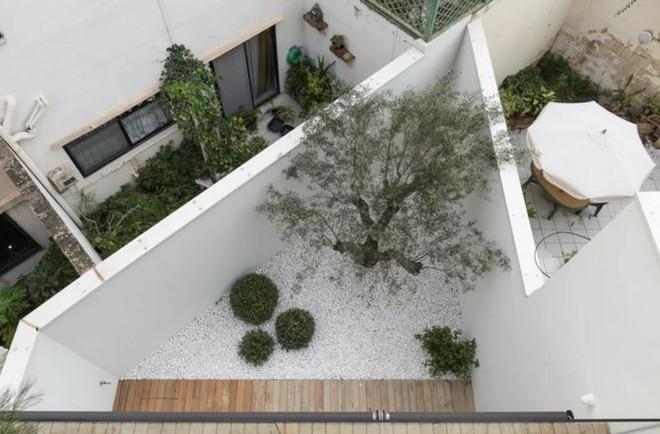 Ngắm kiến trúc nhà phố độc đáo với không gian hiện đại, có phòng tập thể dục, chiếu phim và hồ bơi trong suốt trên nóc nhà - Ảnh 5.