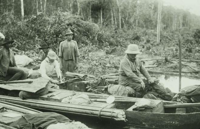 Loài người thực sự nợ cá Piranha khét tiếng Amazon một lời xin lỗi: chúng đáng sợ là do con người - Ảnh 3.