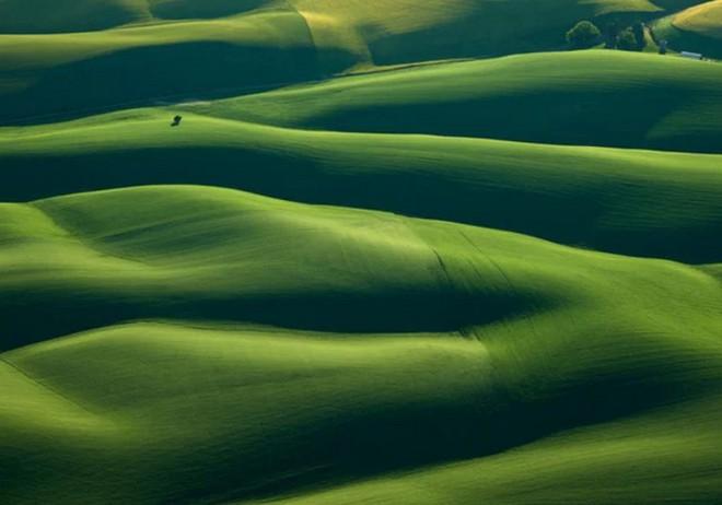 Khi những nông trại hóa thành bức ảnh nghệ thuật đẹp mê hồn dưới góc nhìn từ máy bay - Ảnh 1.