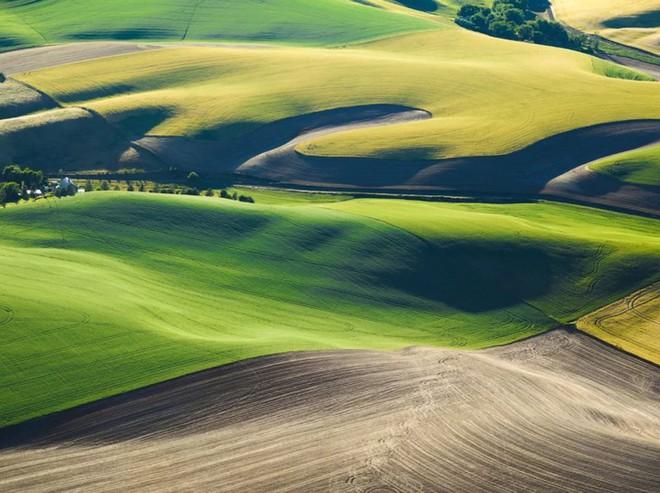 Khi những nông trại hóa thành bức ảnh nghệ thuật đẹp mê hồn dưới góc nhìn từ máy bay - Ảnh 4.