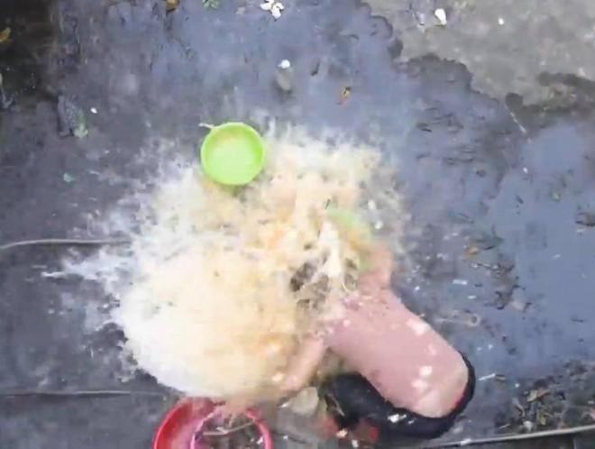 Lại thêm YouTuber nữa đổ hàng trăm quả trứng vào người lạ để troll, bị truy lùng và report tới tấp - Ảnh 1.