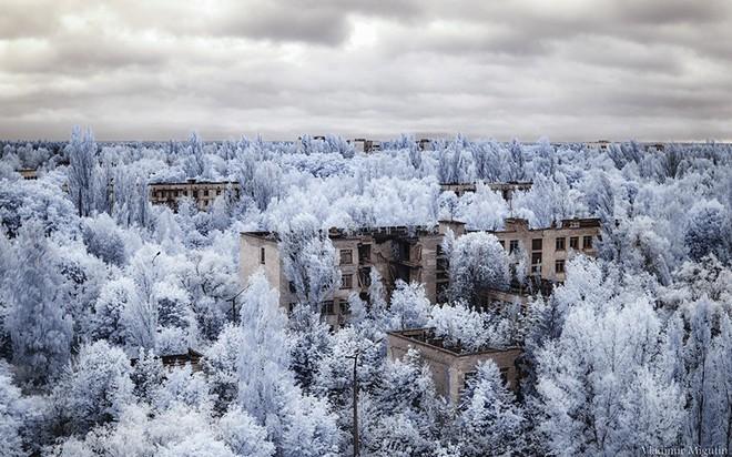 Từ vùng đất ma không ai dám bén mảng, nhà máy điện hạt nhân Chernobyl bỗng hóa xứ sở thần tiên đẹp lịm tim qua lăng kính của nhiếp ảnh gia - Ảnh 18.