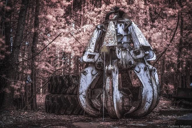 Từ vùng đất ma không ai dám bén mảng, nhà máy điện hạt nhân Chernobyl bỗng hóa xứ sở thần tiên đẹp lịm tim qua lăng kính của nhiếp ảnh gia - Ảnh 23.