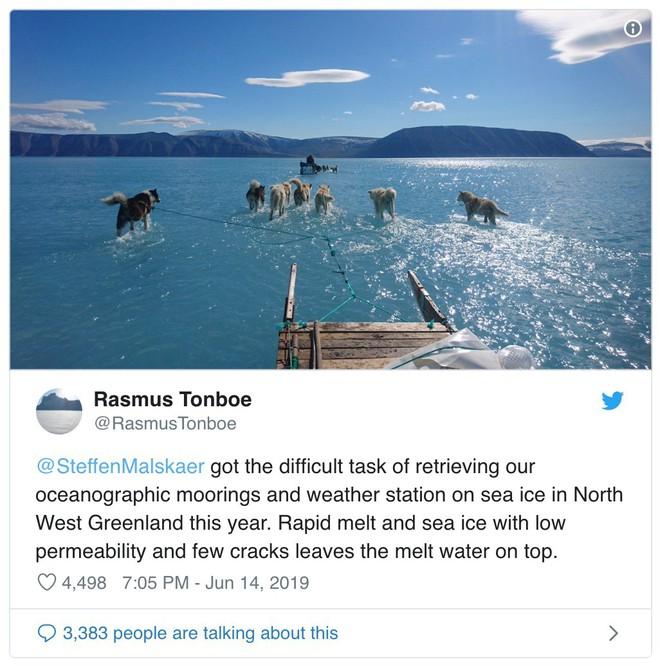 Greenland mất đi 2 tỷ tấn băng chỉ trong 1 ngày, chó kéo xe không còn băng tuyết để mà chạy - Ảnh 3.