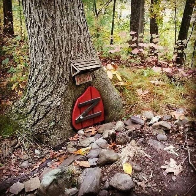 22 thứ kỳ lạ được dân tình phát hiện trong rừng, phải khoe ngay với internet thì mới chịu được - Ảnh 3.