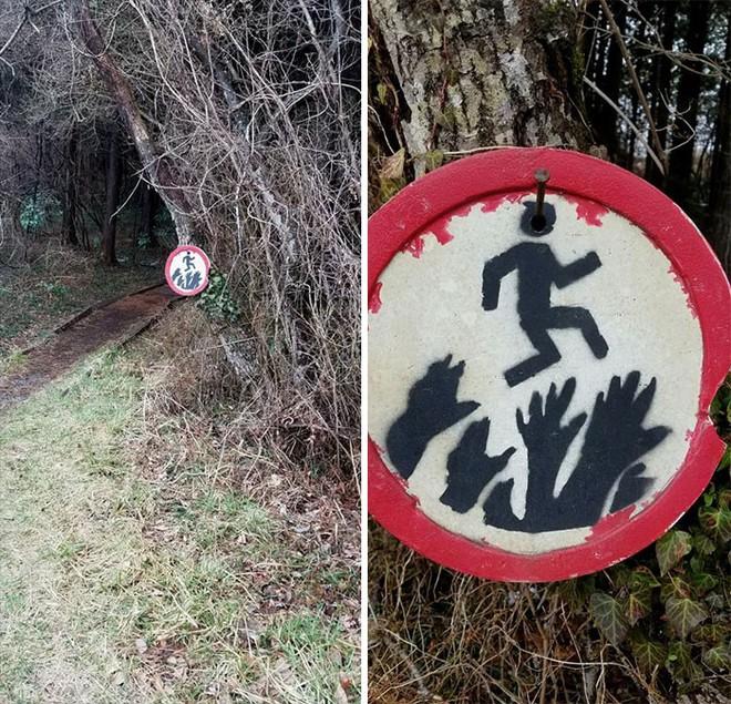 22 thứ kỳ lạ được dân tình phát hiện trong rừng, phải khoe ngay với internet thì mới chịu được - Ảnh 14.
