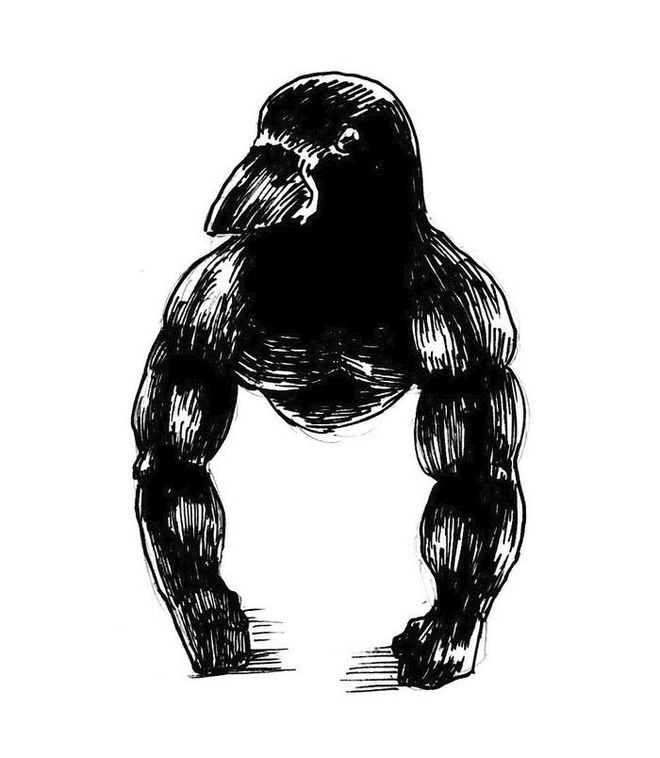 Con quạ ngồi xổm như khỉ đột khiến internet hoang mang, chuyên gia chim liền có câu trả lời - Ảnh 6.