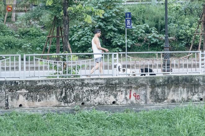 Sông Tô Lịch đổi màu sau khi làm sạch bằng công nghệ Nhật Bản: Hoa lau xanh mướt, người dân thư thả câu cá - Ảnh 9.