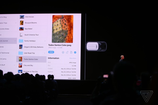 Apple ra mắt iPadOS dành riêng cho iPad: Giao diện màn hình chính mới, hỗ trợ ổ cứng USB, download tập tin bằng Safari, đa nhiệm tốt hơn - Ảnh 4.