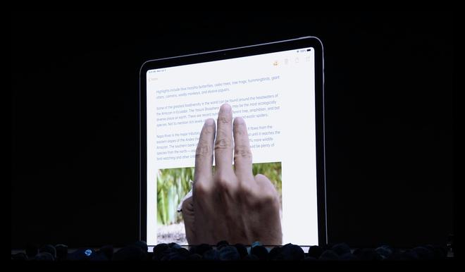 Apple ra mắt iPadOS dành riêng cho iPad: Giao diện màn hình chính mới, hỗ trợ ổ cứng USB, download tập tin bằng Safari, đa nhiệm tốt hơn - Ảnh 5.