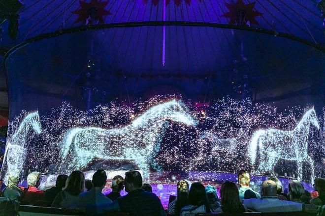 Người Đức rủ nhau đi xem xiếc thú Hologram để phản đối bạo hành động vật - Ảnh 4.