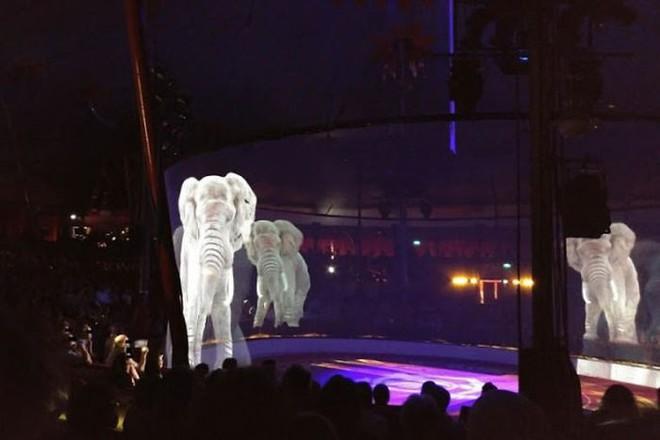Người Đức rủ nhau đi xem xiếc thú Hologram để phản đối bạo hành động vật - Ảnh 6.