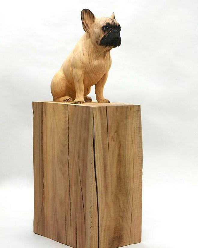 Họa sỹ biến những khúc gỗ vô tri vô giác thành các tác phẩm điêu khắc chân thực đến khó tin - Ảnh 15.