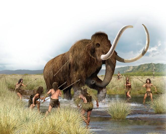 Ba triệu năm trước, chỉ vì mất một gen này mà con người trở thành loài động vật duy nhất dễ mắc bệnh tim mạch - Ảnh 4.