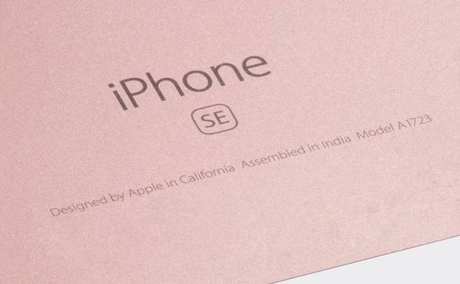 Chiến lược sản xuất iPhone tại Ấn Độ bắt đầu mang tới trái ngọt cho Apple - Ảnh 1.