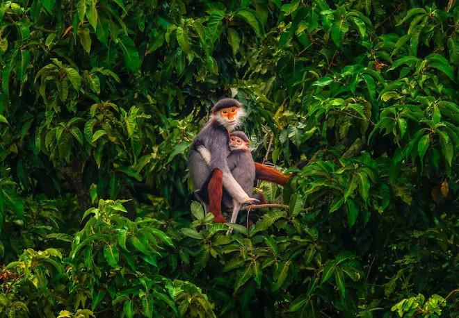 """Được hỏi """"tình yêu là gì"""", nhiếp ảnh gia người Việt và đồng nghiệp liền đáp lại bằng loạt ảnh ấn tượng - Ảnh 6."""