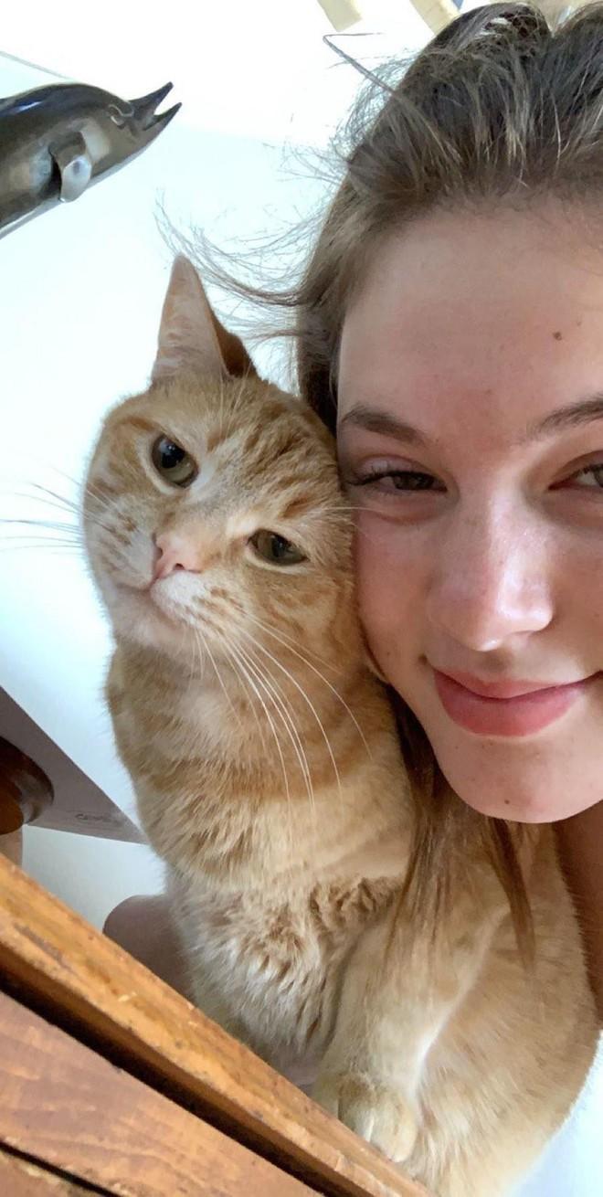 Chú mèo gây sốt mạng xã hội vì sự siêu đáng yêu của mình trên Tik Tok - Ảnh 5.