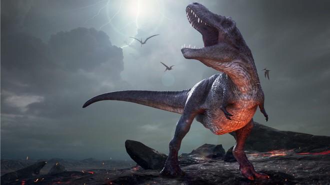 Bất ngờ phát hiện tổ tiên của khủng long bạo chúa chỉ có kích thước nhỉnh hơn một con chó - Ảnh 1.
