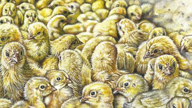 Mỗi năm, 7 tỷ con gà trống con sẽ bị giết ngay khi vừa mới nở: Công nghệ trứng nhân đạo này sẽ thay đổi điều đó - Ảnh 2.