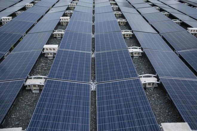 Walmart kiện Tesla sau khi các tấm pin mặt trời bắt lửa tại các cửa hàng - Ảnh 1.
