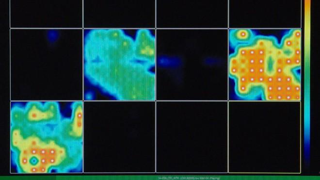 Nuôi hàng trăm bộ não thu nhỏ trong ống nghiệm, các nhà khoa học phát hiện chúng có sóng não như trẻ sơ sinh - Ảnh 3.