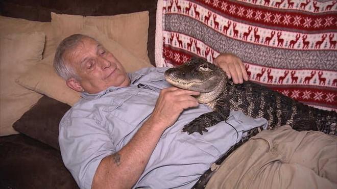 Đây là Wally - chú cá sấu chuyên chữa trầm cảm cho người già - Ảnh 1.