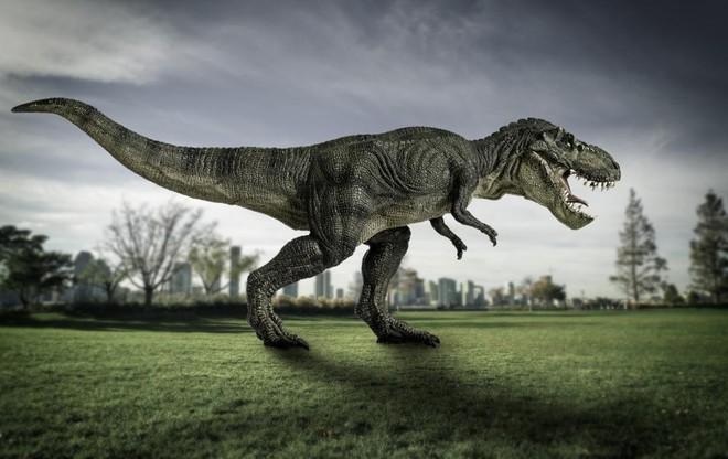 Khủng long bạo chúa T-Rex đã tích hợp máy điều hòa không khí trong hộp sọ - Ảnh 1.