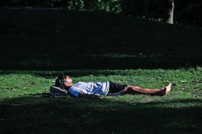 Tập thói quen ngủ trưa từ hôm nay có thể cứu mạng sống của bạn trong tương lai - Ảnh 1.