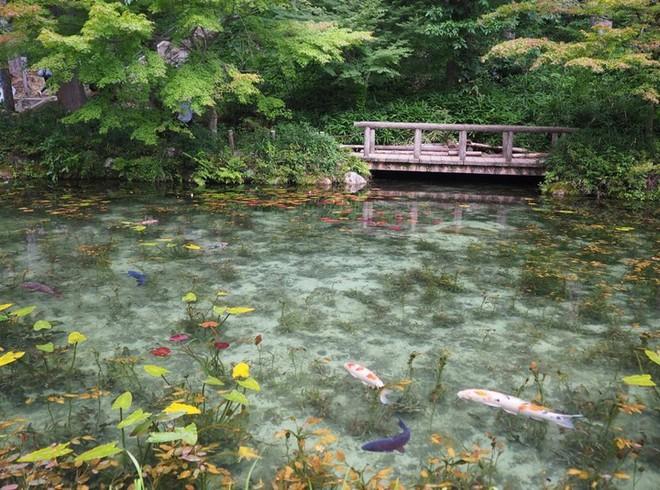 Nếu đến Nhật Bản, đừng quên ghé thăm hồ nước trong vắt, đẹp như bức tranh thủy mặc này - Ảnh 6.