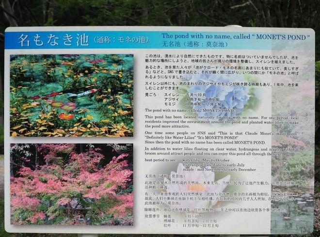 Nếu đến Nhật Bản, đừng quên ghé thăm hồ nước trong vắt, đẹp như bức tranh thủy mặc này - Ảnh 3.