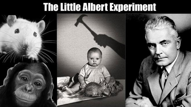 Albert bé nhỏ - một trong những thí nghiệm khủng khiếp nhất trong lịch sử - Ảnh 4.