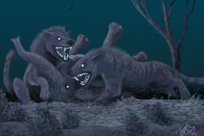 Loài động vật có vú ăn thịt lớn nhất trên đất liền, được mệnh danh là máy xay thịt di động - Ảnh 7.