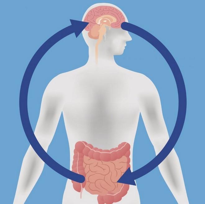 """Tưởng đâu xa lạ, chính vi khuẩn đường ruột có thể là nguyên nhân khiến tâm trạng bạn """"mưa nắng thất thường""""? - Ảnh 2."""