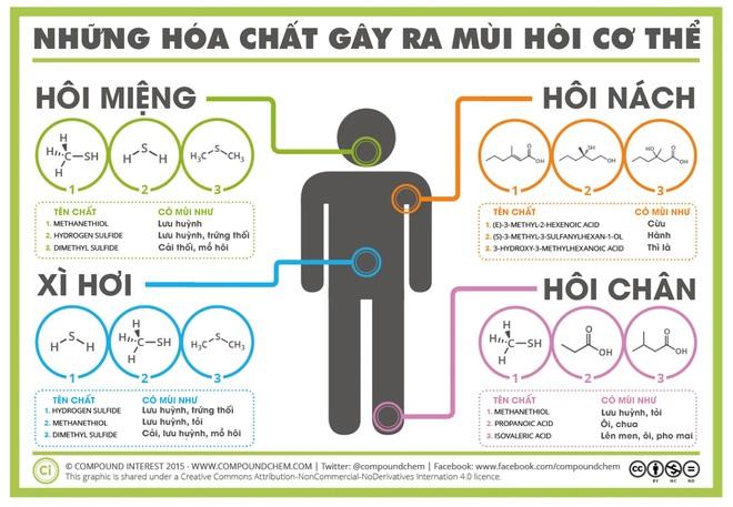 [Infographic] Điểm mặt gọi tên những hợp chất gây hôi miệng, hôi nách, hôi chân - Ảnh 1.