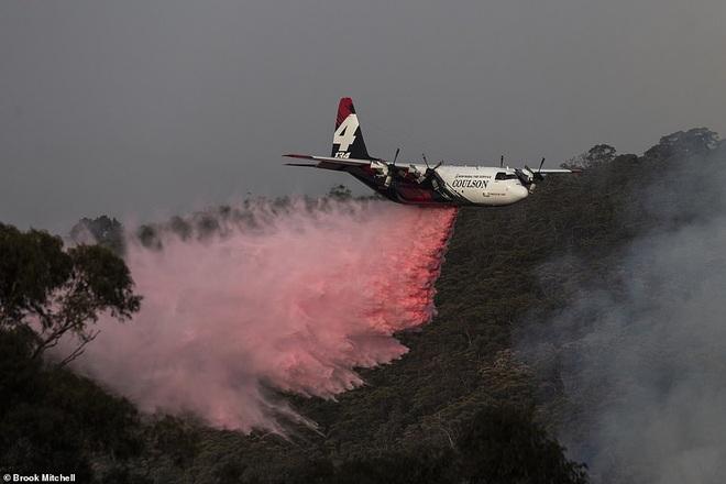 Hỏa Diệm Sơn ở Úc: Đám cháy lớn từ 2 nơi nhập vào nhau tạo thành ngọn lửa khổng lồ thiêu đốt hơn nửa triệu héc ta - Ảnh 4.
