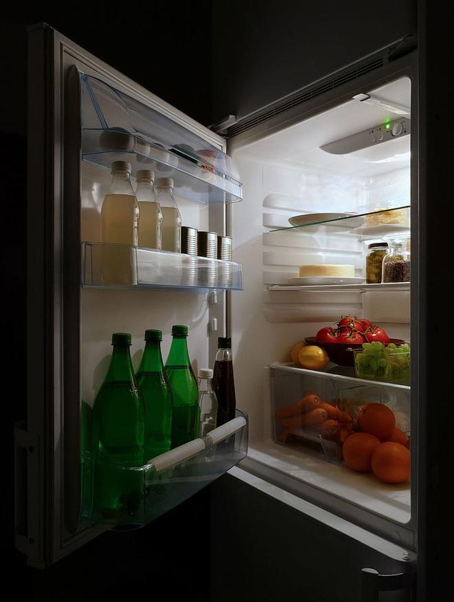 Ngày xưa mà chúng ta sử dụng dự án tủ lạnh của Albert Einstein và Leo Szilard, có khi tầng ozone đã không thủng một lỗ - Ảnh 4.