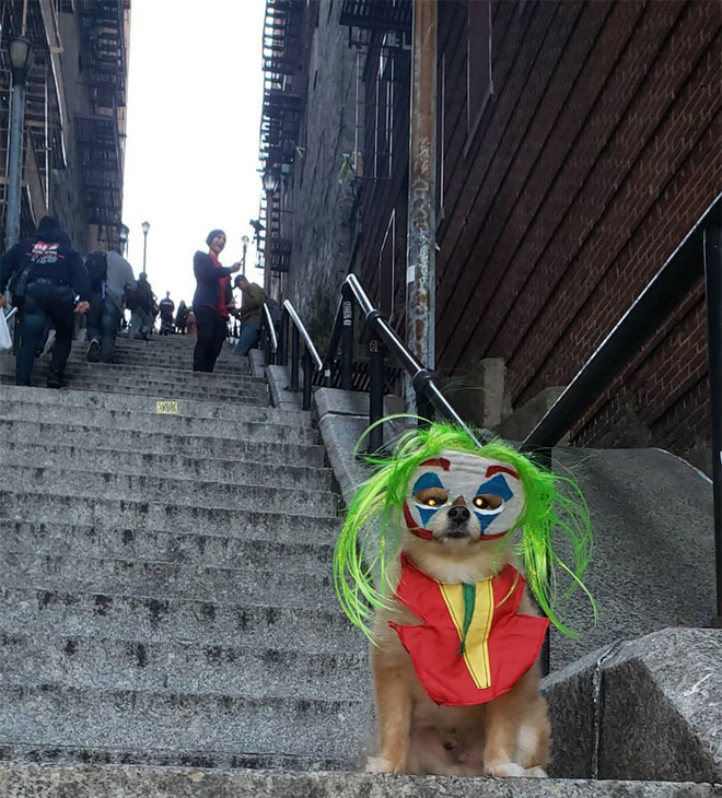 [Chùm ảnh] Đoạn cầu thang nơi Joker nhảy múa điên loạn trong phim nay đã trở thành địa điểm du lịch nổi tiếng thế giới - Ảnh 17.