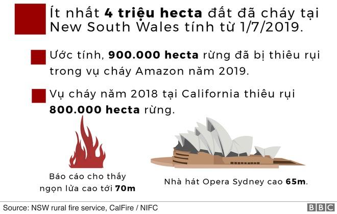 Lý giải trực quan về đám cháy khủng khiếp tại Úc: nhiệt lượng từ đâu, tại sao cháy rừng lại gây bão sét, người ta có chạy thoát được ngọn lửa không? - Ảnh 7.