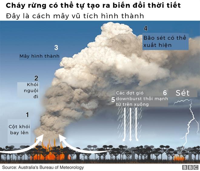 Lý giải trực quan về đám cháy khủng khiếp tại Úc: nhiệt lượng từ đâu, tại sao cháy rừng lại gây bão sét, người ta có chạy thoát được ngọn lửa không? - Ảnh 9.
