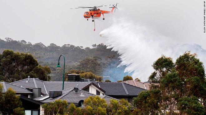 Giải thích nhanh về đại thảm họa cháy rừng đang diễn ra tại Úc nếu bạn lười theo dõi - Ảnh 7.