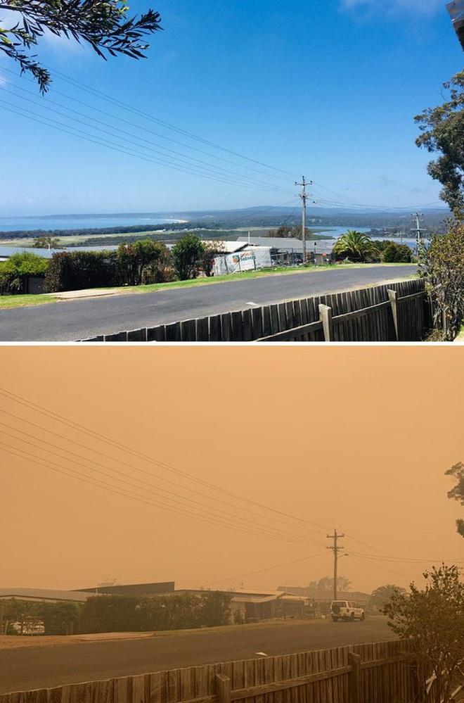 Chùm ảnh đau lòng: Nước Úc trước và sau khi ngọn lửa hung tàn quét qua - Ảnh 18.
