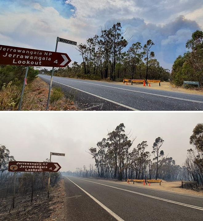 Chùm ảnh đau lòng: Nước Úc trước và sau khi ngọn lửa hung tàn quét qua - Ảnh 19.