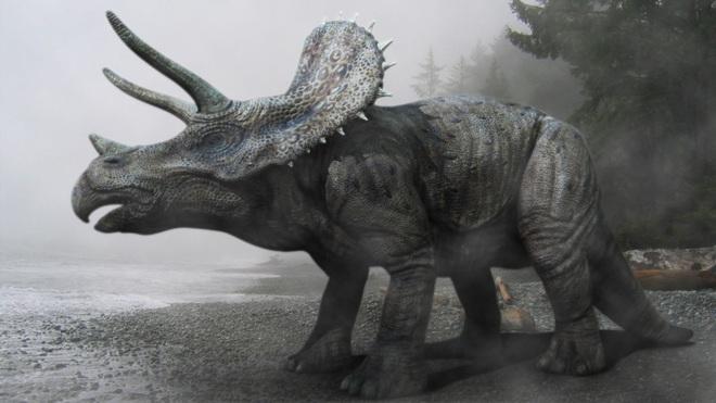 Sừng khủng long 33.500 năm tuổi khiến các nhà khoa học đặt câu hỏi: Phải chăng con người đã sống cùng thời với khủng long? - Ảnh 3.